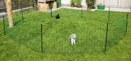 Filets pour lapins