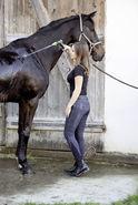 Pantalon d'équitation Genuine Denim