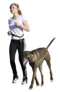 Laisse de jogging/de dressage (3)