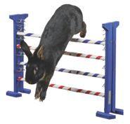 Obstacle pour rongeur Agility horizontal et vertical