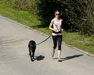 Laisse de jogging avec ceinture Active Leader